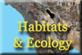 Habitats and Ecology